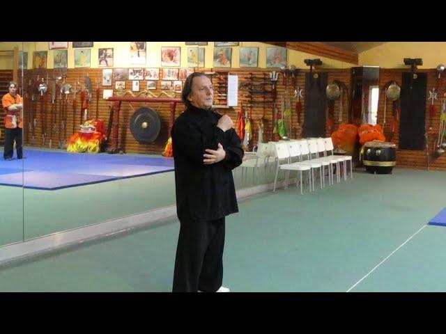 Grandmaster Walter Toch in action live on his workshop 2015 Belgium