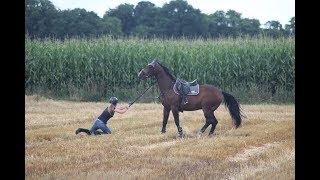 STURZ vom Pferd auf Stoppelfeld || Ich bin doch nur 'n Herzschlag entfernt