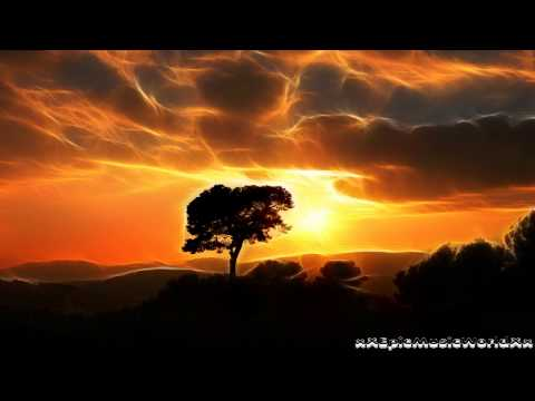 Most Epic Music Of All Time - African Skies (Stephen J. Anderson)