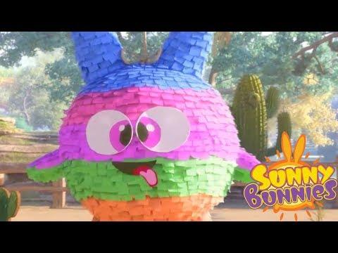 Sunny Bunnies BIRTHDAY GAMES | Cartoons For Children | Funny Cartoons For Children