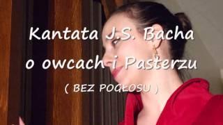 Gambar cover Anna i Marcin Łęccy