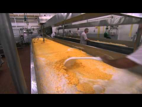 TVO's Making Stuff: How Ivanhoe makes Marble Cheddar Cheese