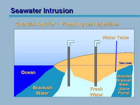 the modeling of salt water intrusion essay Saltwater intrusion in florida - modeling usgs home contact usgs search usgs caribbean-florida water science center surface water groundwater water quality water use evapotranspiration tools and modeling saltwater intrusion nwisweb site data information center coastal aquifers monitoring networks.