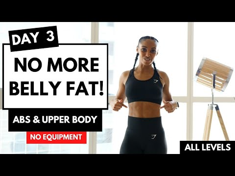 DAY 3 LOSE WEIGHT EXERCISES TO LOSE BELLY FAT (14 Day Exercise Challenge)