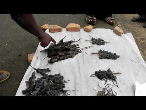 Mbewa, Malawian Delicacy