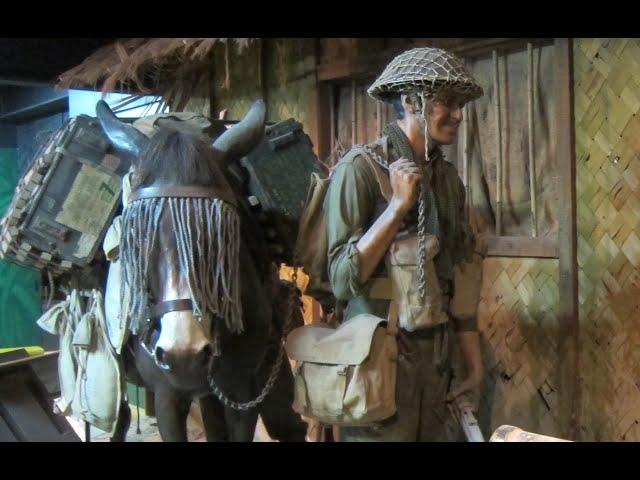 Mule - WW2 Hero Animal