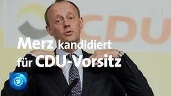 Friedrich Merz zu seiner Kandidatur für den CDU-Vorsitz im tagesthemen-Interview