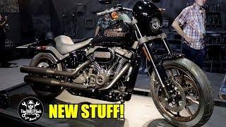 harley-davidson-2020-what-s-new-featuring-matt-laidlaw