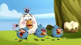 Злые птички - Энгри Бердс - Птичий грипп (S1E45) || Angry Birds Toons