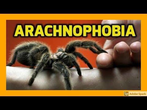 MAGIC TRICKS VIDEOS IN TAMIL #446 I Arachnophobia @Magic Vijay