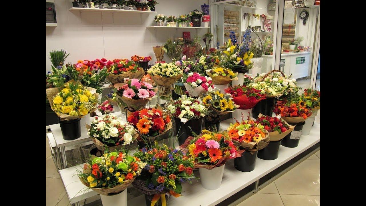 Как начать бизнес комнатные цветы