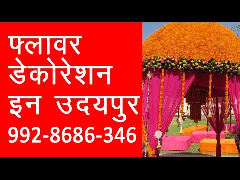 wedding-singers-in-rajasthan,professional-singers-contact-9928686346