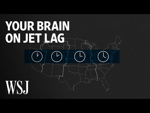 Maddox - What Happens To Your Brain On Jet Lag?