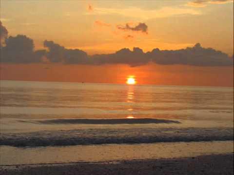 Venice Beach Peter White