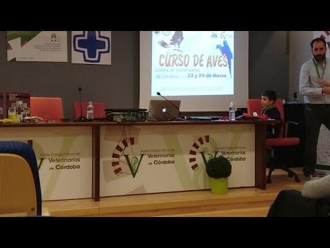 Ponencia Antonio Rodríguez Curso De Aves (AVAFES Córdoba)