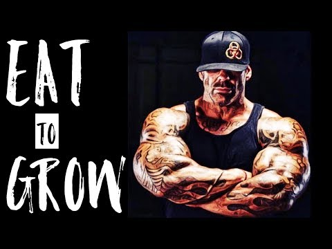 BIGGER BY THE DAY EATING LIKE A BODYBUILDER
