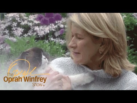 Meet Martha Stewart's Adorable Pets | The Oprah Winfrey Show | Oprah Winfrey Network