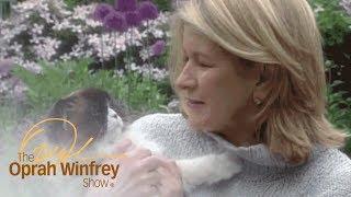 Meet Martha Stewart's Adorable Pets | The Oprah Winfrey Show | Oprah Winfrey Network