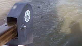 sailing  Ericson 25