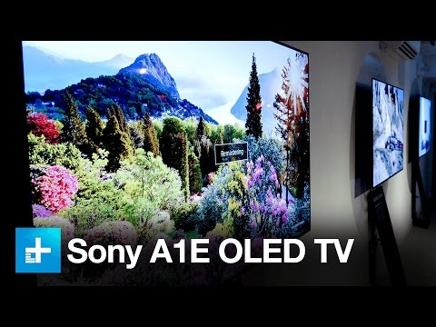 Sony's A1E OLED is a technical marvel, but in one NYC gallery, it's art too