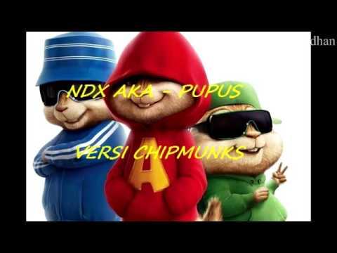NDX AKA - PUPUS (VERSI CHIPMUNKS)