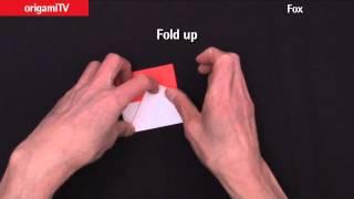 Origami 'fox' : No.13