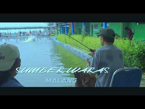 kolam pancing tombro/ikan mas putri complong pasuruan fishing pond golden fish