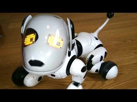 Toys Зуммер. Интерактивная собака робот. Игрушки для детей