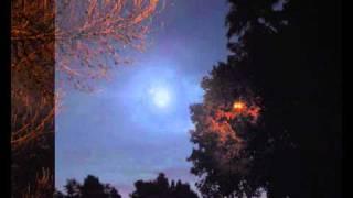 Schiller - Polarstern