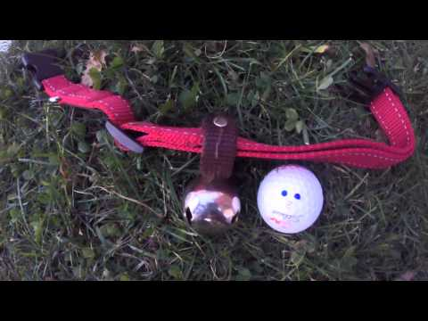 warner-brass-plated-steel-dog-collar-bell-review