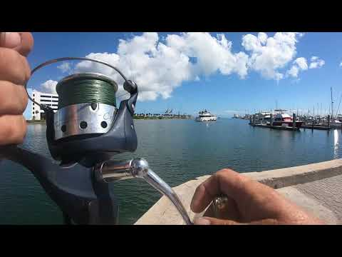 Jetty Park Port Canaveral Florida East Coast Surf Fishing