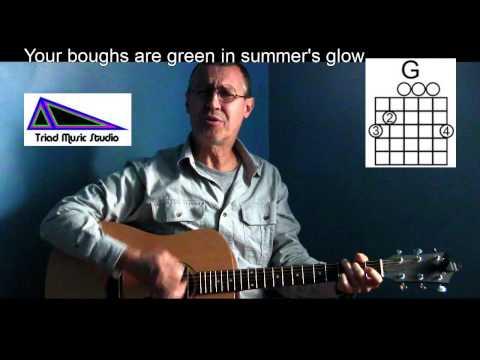 Oh Christmas Tree - Play/Sing Along with Lyrics & Chords - P39