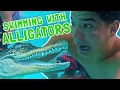 Swimming With Alligators! video