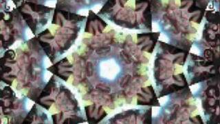 Anima - Bintang
