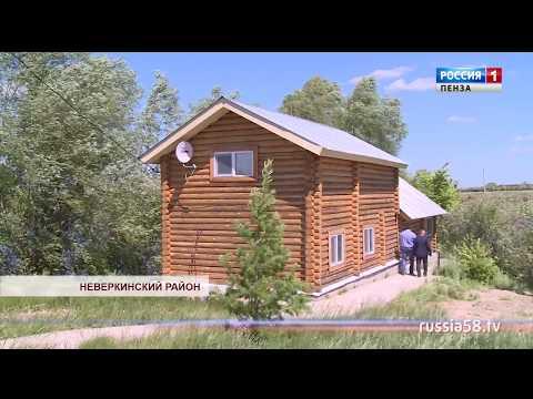 Туристы базы отдыха в Неверкинском районе могут увидеть фазанов