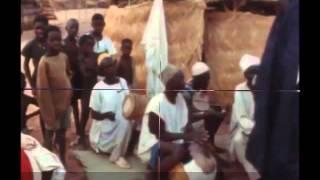 Niger Bitti Harey