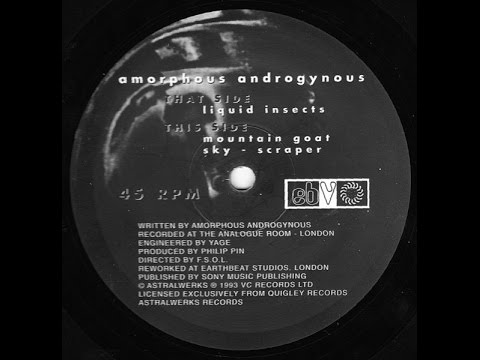 Amorphous Androgynous - Liquid Insects mp3