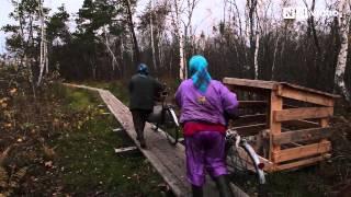 Людзі на балоце / Swamp People