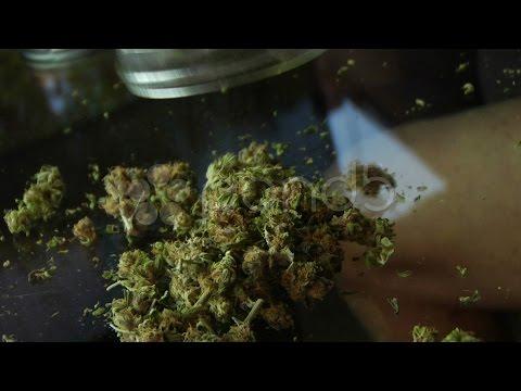 YOLO & ROY | FUMA WEED  [Prod. Dr. Dre] ᴴᴰ