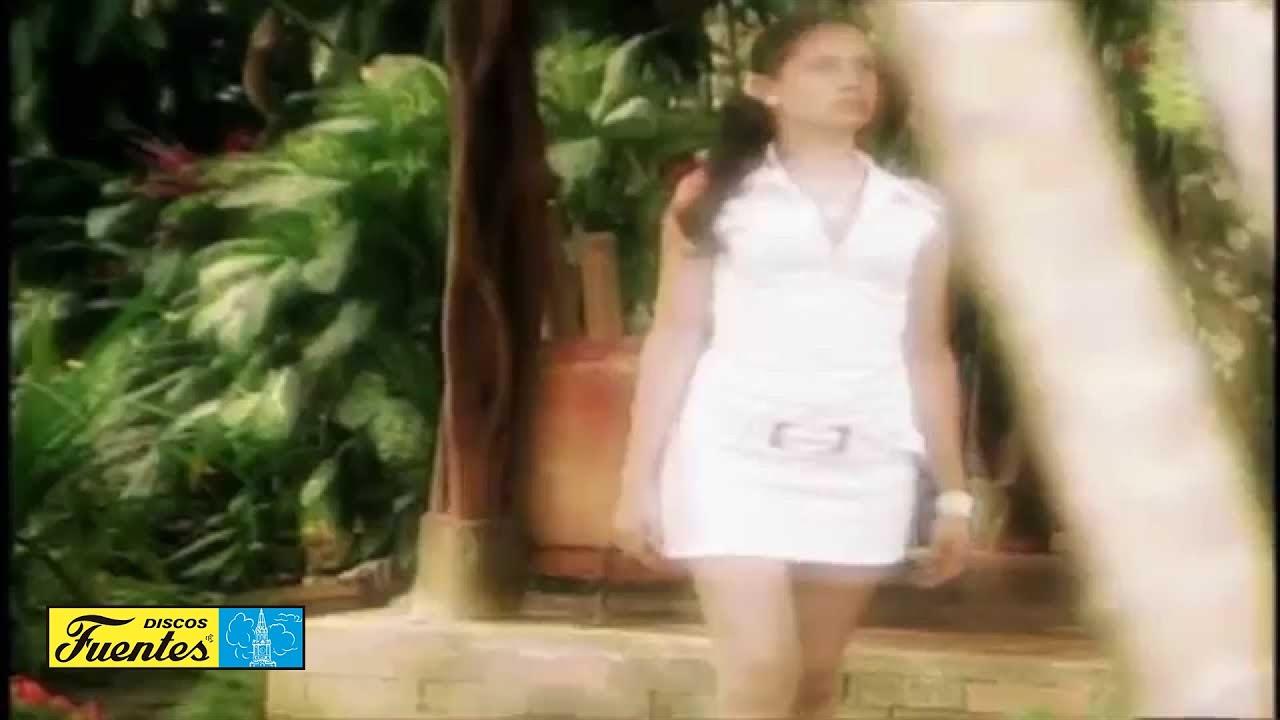 Vestida de garza blanca musica llanera
