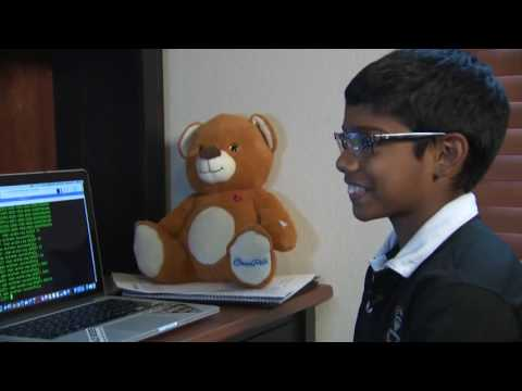 11-year-old kid is a cyber security expert
