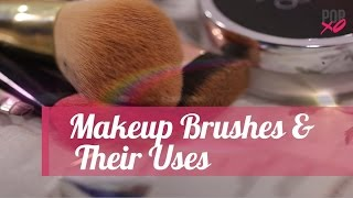 Types Of Makeup Brushes & Their Uses | Makeup for Beginners - POPxo