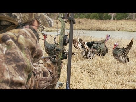 Bowhunting Turkeys: Gobbler at 6 Steps, No Pop-Up Blind