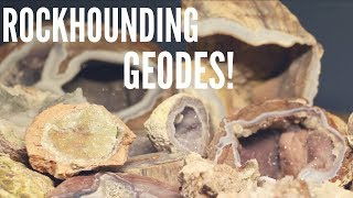 UTAH ROCKHOUNDING/DUGWAY GEODE BEDS!! thumbnail