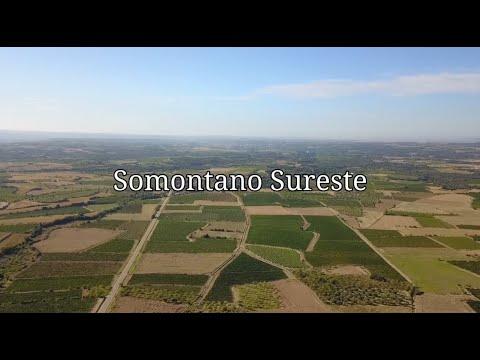 Somontano Sureste