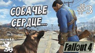 Fallout 4 - 3 - Макс Леоне