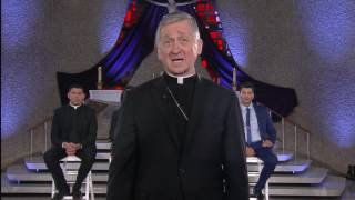 cardinal cupich on immigration