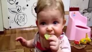 Funny video: Babies Eating Lemons for the First Time Compilation 2016