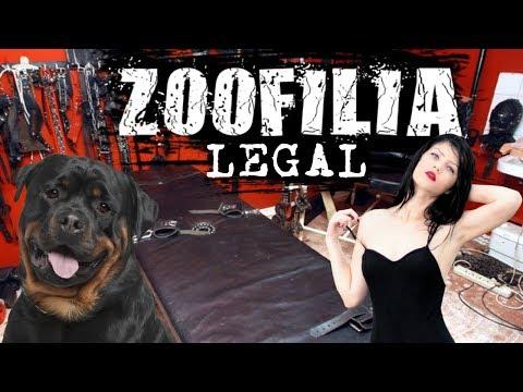 TOP: 10 Países Donde La Z00F1L1A Es Legal |El puesto #3 te perturbara| - Mundo Gore thumbnail