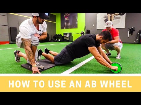 Ab Wheel- How To PROPERLY Use An Ab Wheel | MIND PUMP